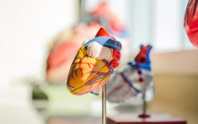 Engaging with patients at risk of developing cardiovascular disease